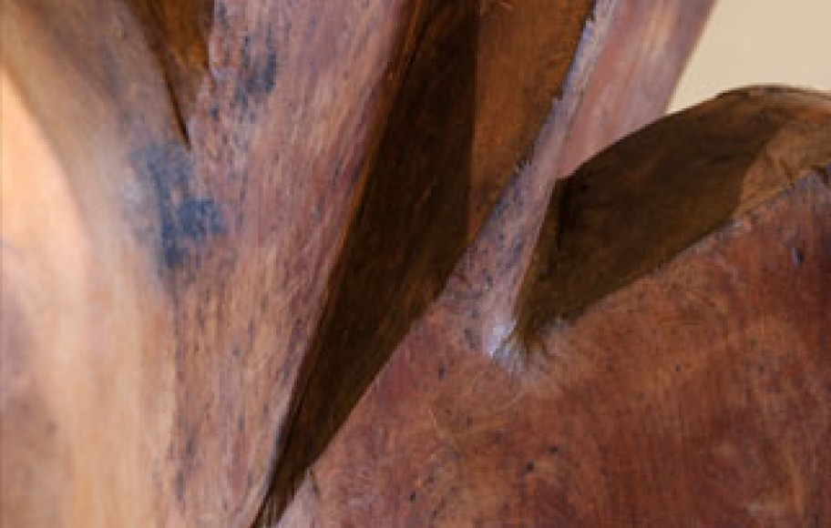 detail of abstract wood sculpture