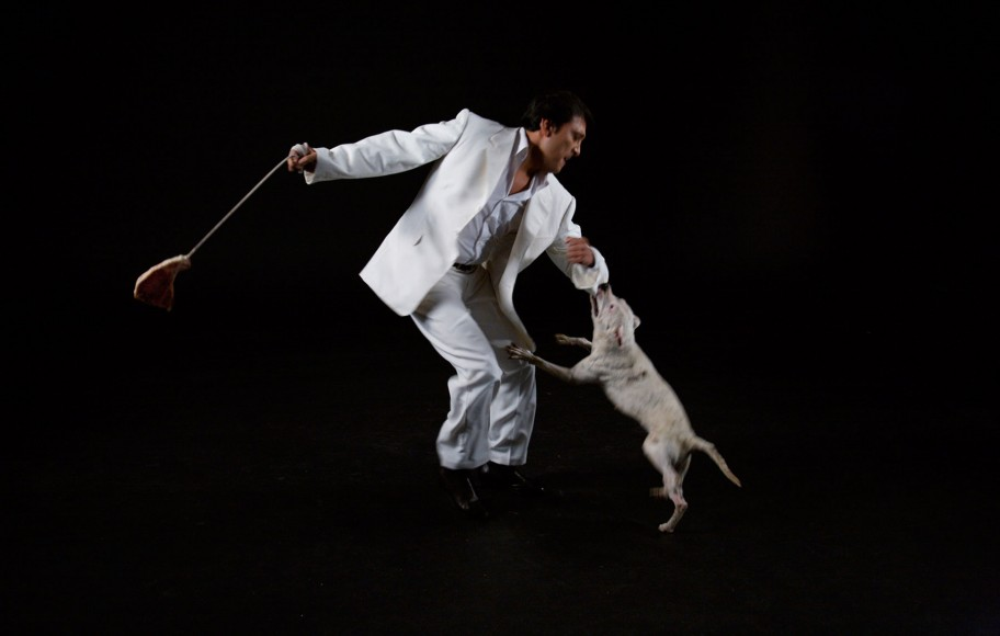 A man dancing with a dog biting his sleeve