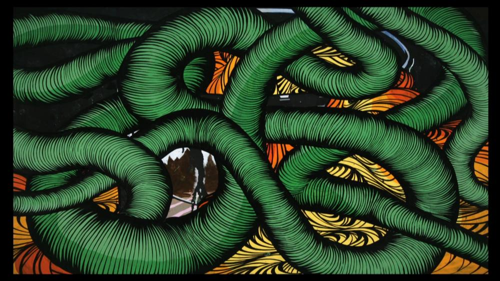 University of Texas Landmarks - Represents 06 ellis animal videostill web?itok=uvQ3kj8