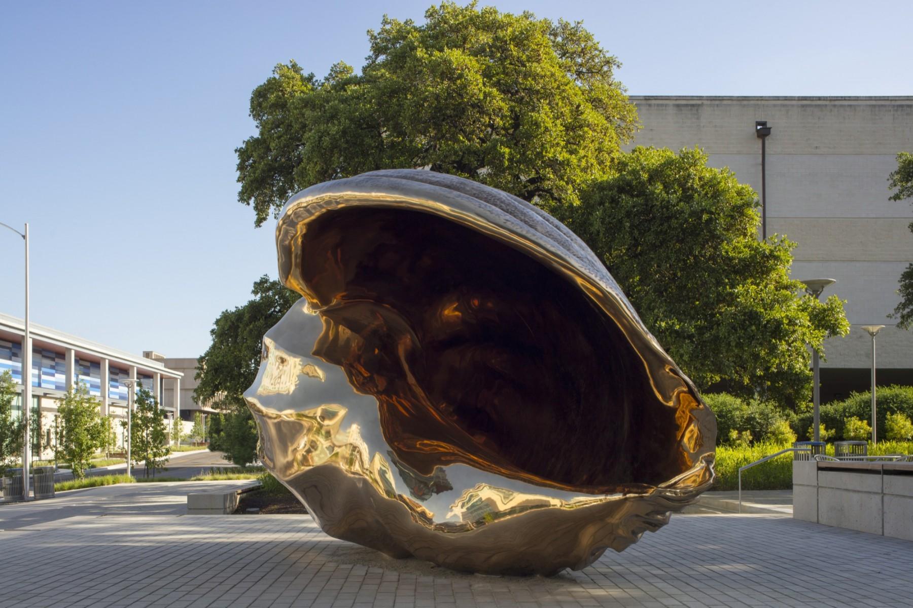 A large shiny bronze shell