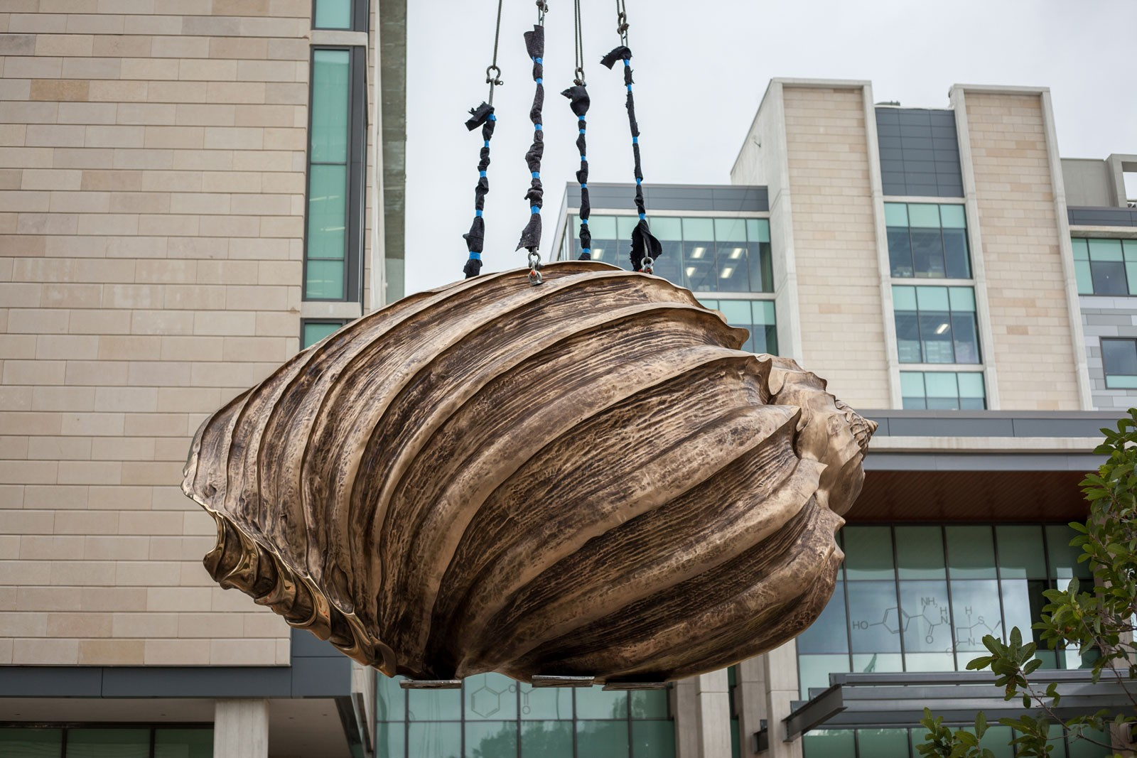 A large bronze shell sculpture hanging from a crane