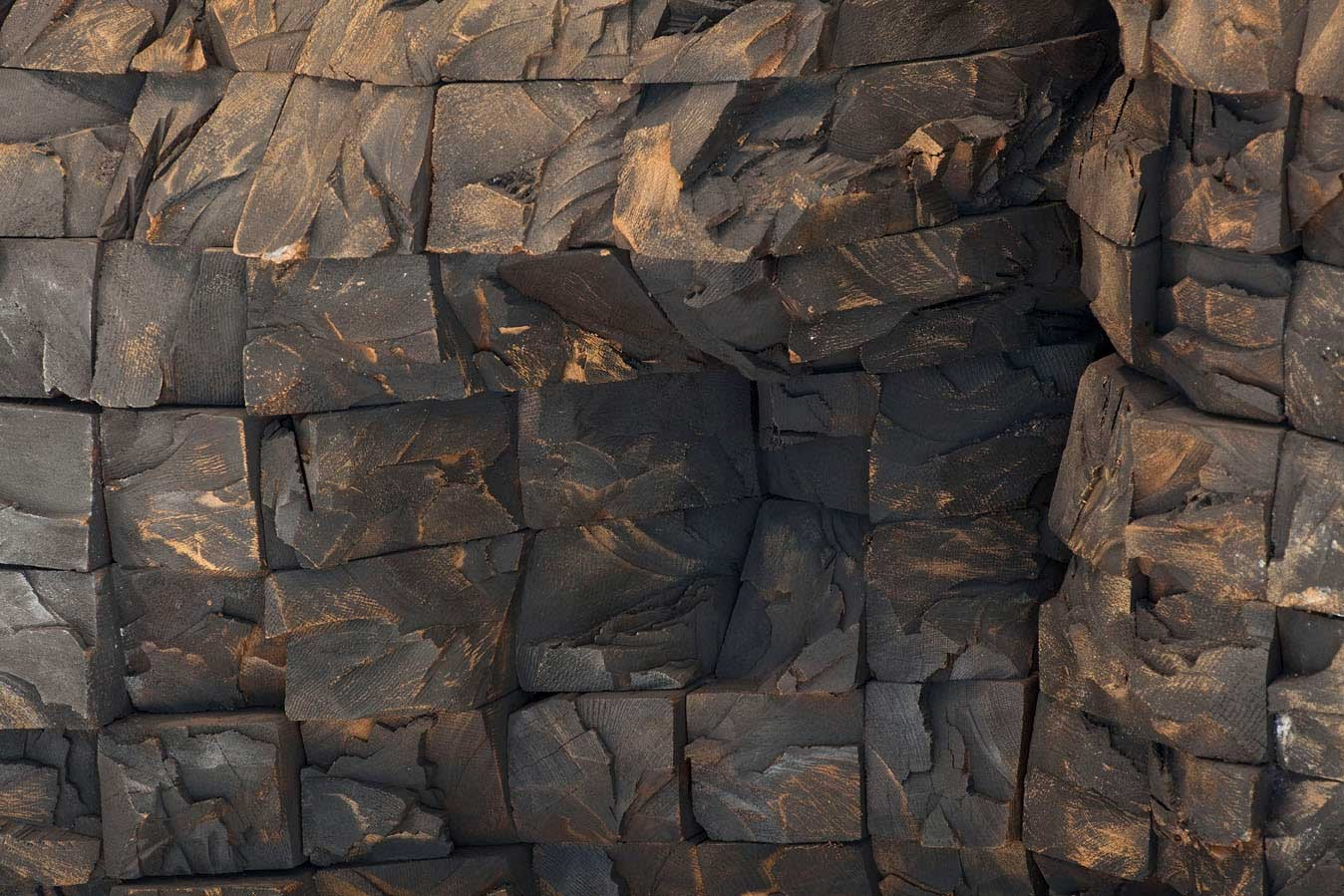 Petrified blocks of wood