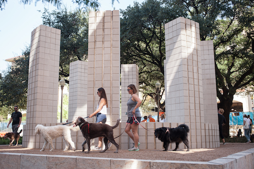 Sol LeWitt structure with people walking dogs