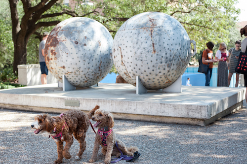 two dogs in front of sculpture