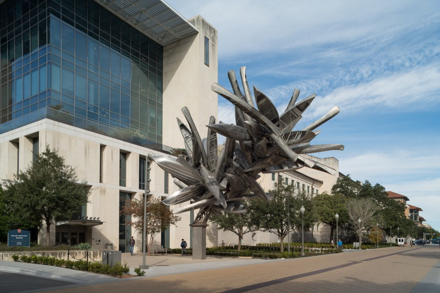 University of Texas Landmarks - Represents dsc 7594 rubins monochromeforaustin final photobypaulbardagjy?itok=PpvDmyfo