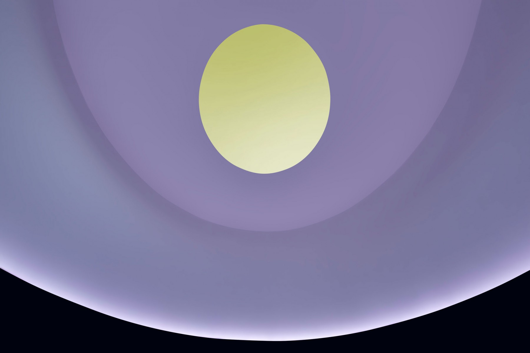 A yellow oval in a light purple circle