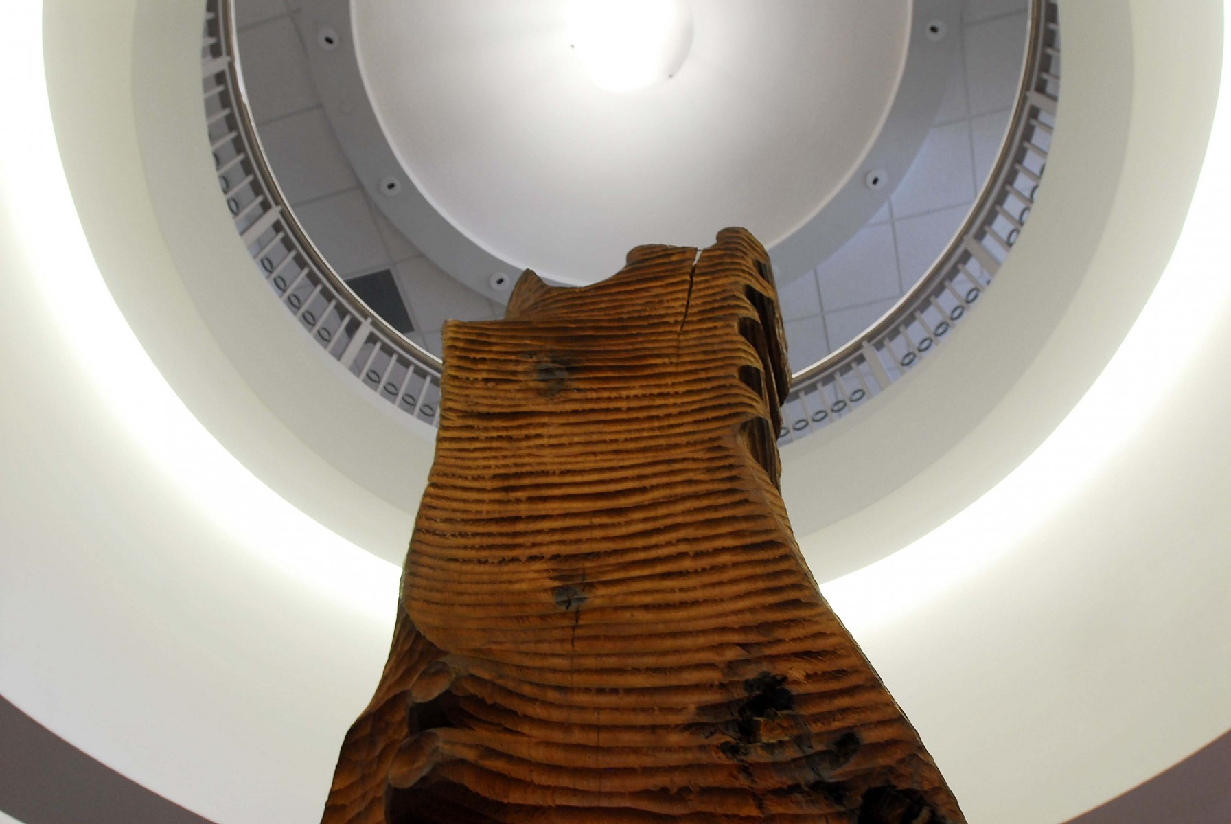 thin wooden sculpture from bottom of frame looking up into oculus of room