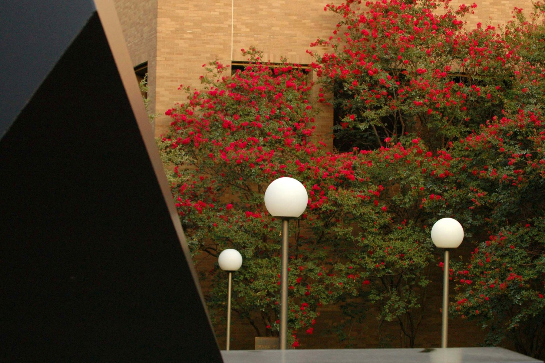 black sculpture on right, lamps and seasonal blossoms behind