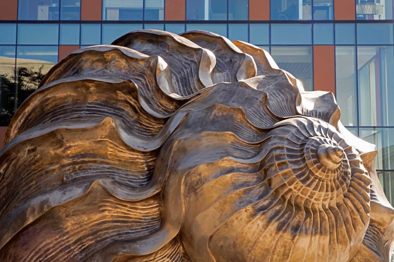The spiral of the large bronze shell with a building behind it