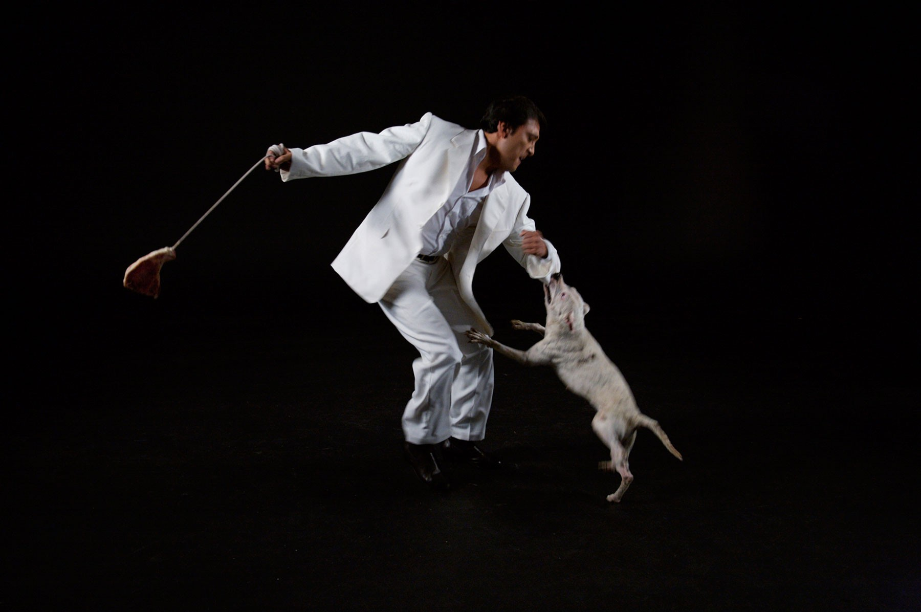 A man dancing while a dog bites his sleeve