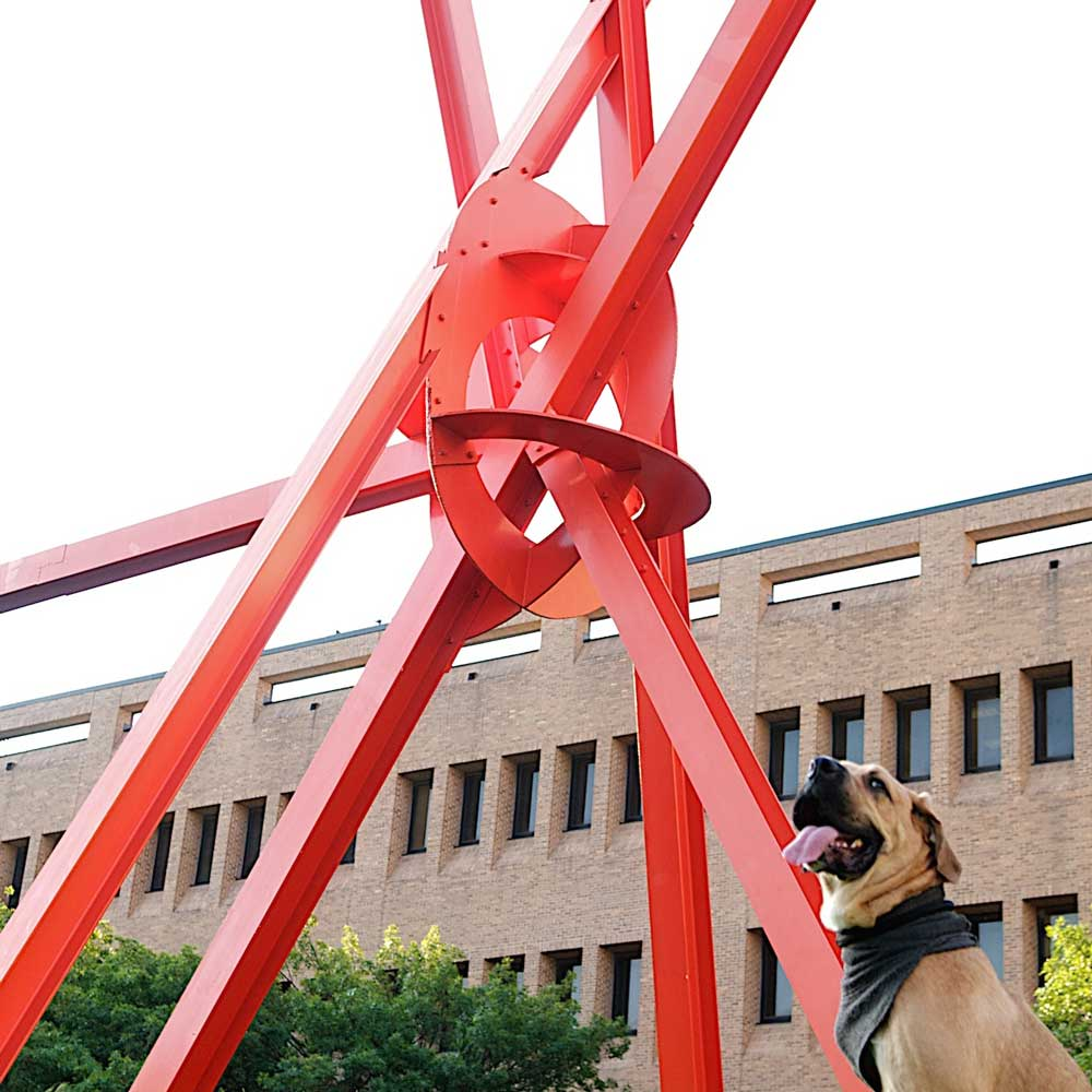 A dog standing in front of a big red sculpture